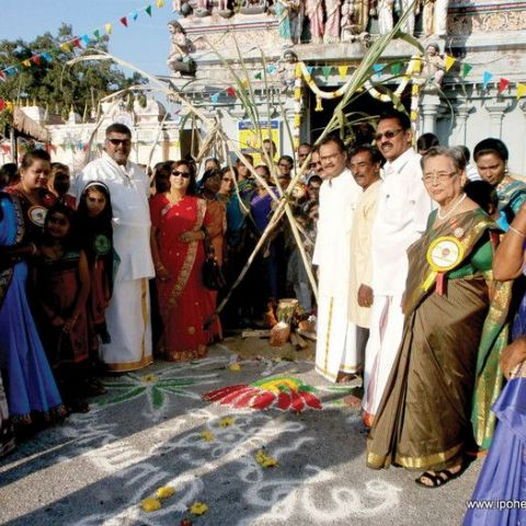 Pongal and Thamilar Thirunal Celebrations Around Ipoh