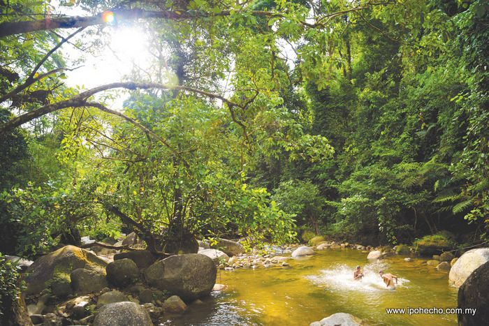 Ipoh Echo Taiping All Set To Woo Tourists
