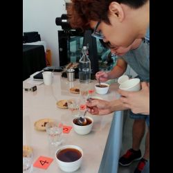 Ninety One Coffee Cupping (23 Dec 2017)