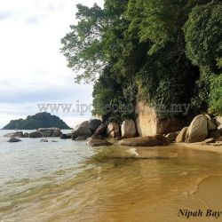 Pangkor Island Is More Than Just Seafood!