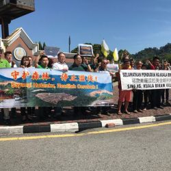 Protest over Illegal Logging