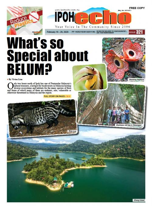 Ipoh Echo Issue 321