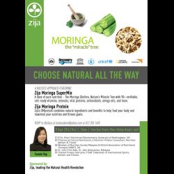 Moringa The Miracle Tree (8 Sep 2016)