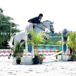National Horse Show 2013