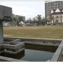 City Council's Front Yard a Breeding Ground for Dengue
