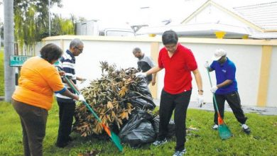 Photo of Gotong Royong to Battle Dengue