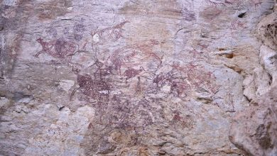 Photo of Race to Protect Tambun's Forgotten Ancient Rock Art
