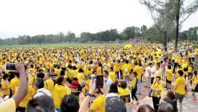 Photo of A Sea Of Yellow
