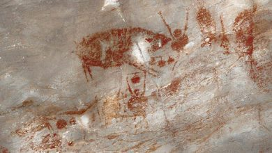 Photo of Interpreting Tambun Rock Art: A Local Dialogue