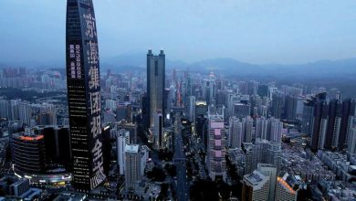 Photo of Postcard from Shenzhen