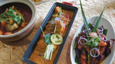 Photo of WEIL's Tiffin Goes Peranakan
