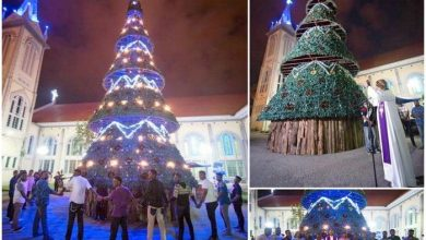 Photo of Tallest Christmas Tree in Perak