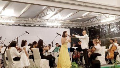Photo of Symphony Under The Stars