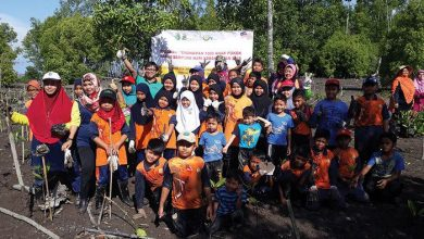Photo of 1000 Mangrove Trees for Merdeka Day