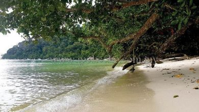 Photo of Pangkor Island Is More Than Just Seafood!