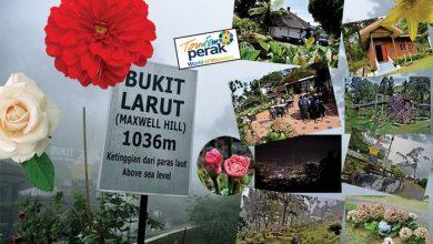 Photo of Bukit Larut