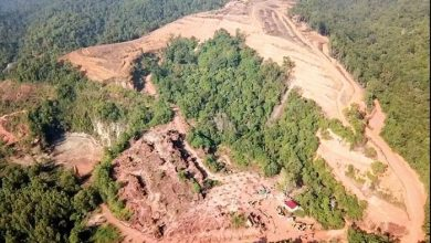 Photo of Editorial:  Fate of Kledang Hill