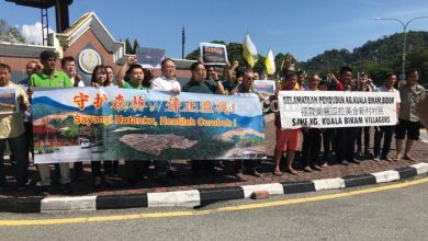 Photo of Protest over Illegal Logging