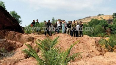 Photo of Restoring Kledang Hill