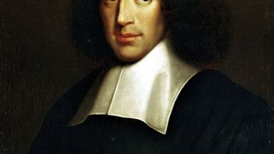 Photo of Reflections on Spinoza