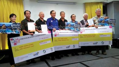 Photo of Winning Shots of Ipoh Cultural Parade