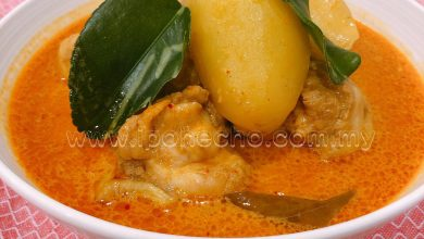 Photo of Recipes for Aidilfitri: Nyonya Curry Chicken