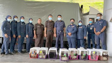 Photo of Smuggling of Dogs Worth RM20,000 Stopped by MAQIS