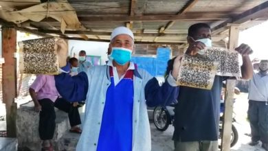 Photo of Some 3,000 Batu Gajah Villagers Disturbed by Flies