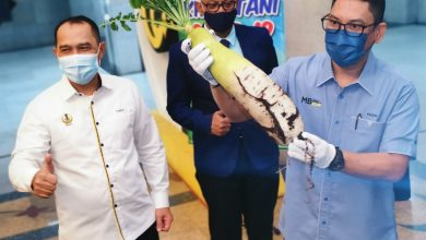 Photo of RM856,500 for Farming Project