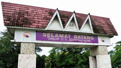 Photo of Mini Botanical Garden to be Built in D.R. Park; Tambun Road to be Upgraded