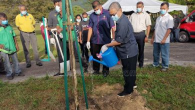 Photo of 'Continue Maintaining Environmental Sustainability'—Dato' Rumaizi