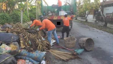 Photo of Chinese New Year Rubbish Collection Service