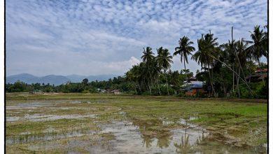 Photo of Malaysia through the lenses of a Mat Salleh: Episode 23