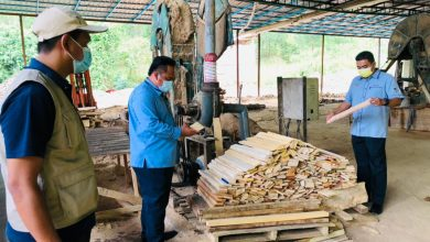Photo of Wood-based Factory Operating Without Valid Licence Raided