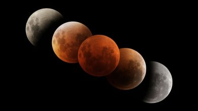 Photo of Total Lunar Eclipse on May 26