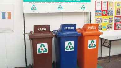 Photo of Recycling Saves Mother Earth