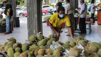 Photo of No Durian Feasts!