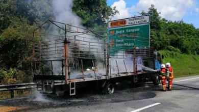 Photo of Lorry Fire at Expressway, No Victims Reported