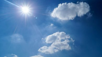 Photo of Hot and Dry Weather Expected Until September