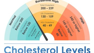 Photo of Cholesterol is Too Important to Ignore