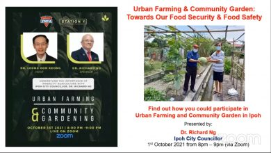 Photo of Benefits of Urban Farming and Community Gardens